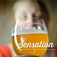 Four main sensations: Sensation